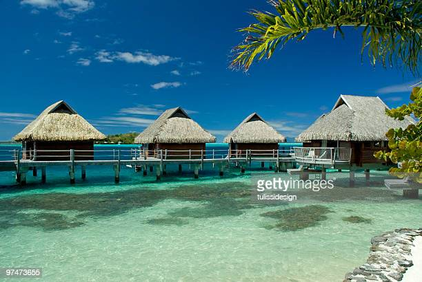 View of beautiful tropical paradise with blue sky