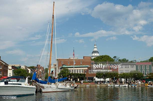 View of boats by the Annapolis Harbor and the city