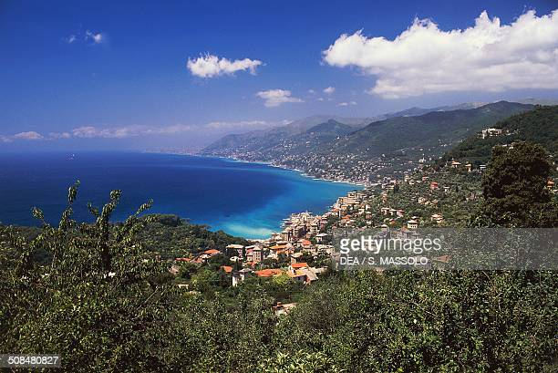 View of Camogli and Paradise Gulf from the hamlet of San Rocco Liguria Italy