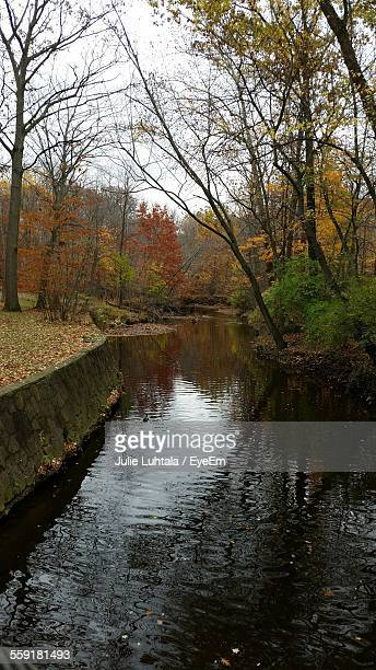 View Of Canal During Autumn