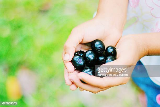 View Of Child Holding Jamun In Cupped Hands