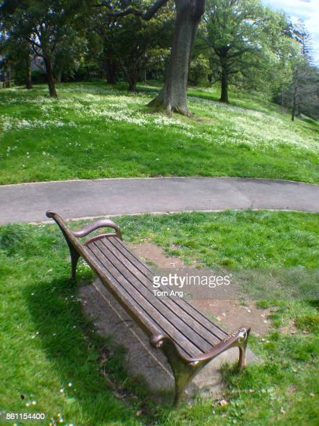 View of  city park and party with bench seat and path