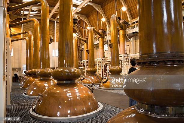 View of copper whiskey stills in a distillery
