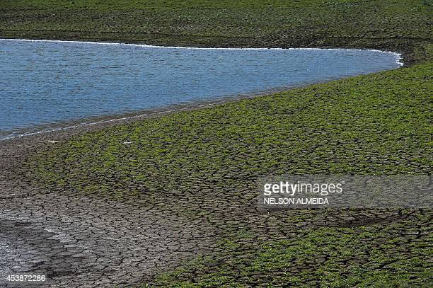 View of cracked ground in an area which used to be underwater at the Jaguari dam in Vargem 100km from Sao Paulo during a drought affecting Sao Paulo...