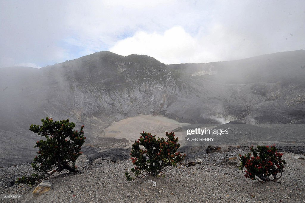 A view of crater of Tangkubanparahu mountain in Bandung on February 22, 2009. Tangkubanparahu is an active stratovolcano, one of 129 active volcanos in Indonesia. Tangkubanparahu has erupted about seventeen times since 1826.
