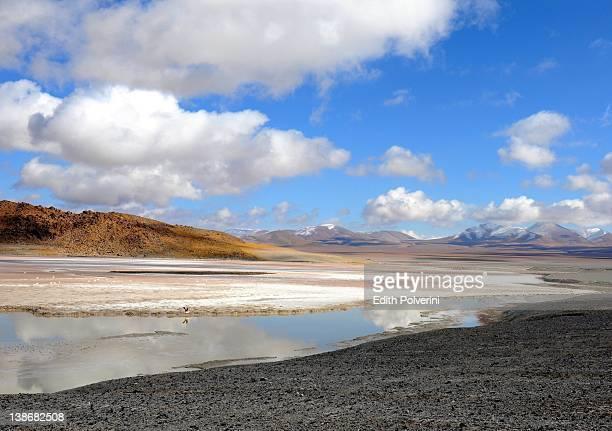 View of Diamante Lagoon