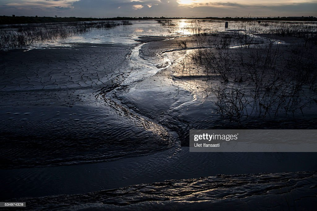 A view of dried plants caused by mudflow on May 27, 2016 in Sidoarjo, East Java, Indonesia. Residents of villages that were damaged by the Sidoarjo mudflow and residents received compensation, after almost ten years, from the Indonesian oil and gas company, PT Lapindo Brantas. The mudflow eruption is suspected to have been triggered by the drilling activities of oil and gas company, though they refute the claims, instead blaming a 6.3 magnitude earthquake that struck a neighboring city two days before the mudflow eruption. The earthquake struck Yogyakarta on May 27th, 2006, a city 150 miles west of a drill site in Sidoarjo, two days before the mudflow eruption. According to reports, twenty lives were lost and nearly 40,000 people displaced, with damages topping $2.7 billion. Ten years since the eruption, the mud geysers continue to spurt daily and high levels of heavy metals have been detected in nearby rivers.