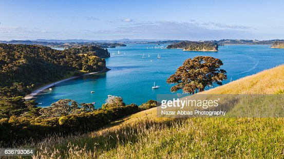 View of East Coast Bays from top with pristine blue turquoise water, Auckland, New Zealand.