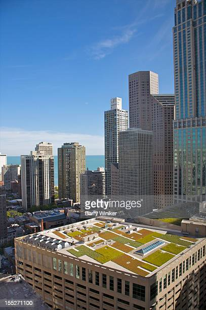 View of environmental rooftop and nearby towers.