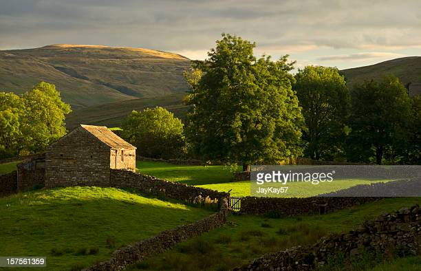 View of farmland hills in Swaledale, Yorkshire