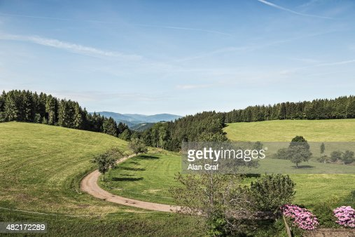 View of fields and dirt track, Baden-Wuerttemberg, Germany