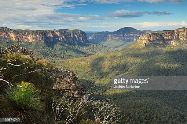 View of Grose Valley, Blue Mountains
