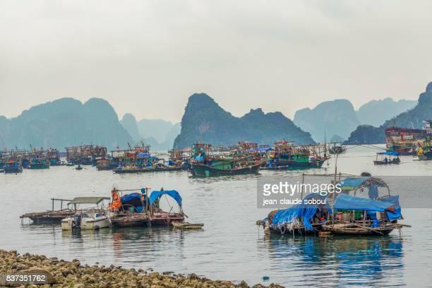 View of halong bay (Vietnam)
