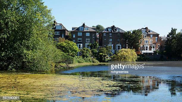 A view of Hamstead Heath