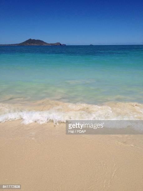 View of Hawaii beach