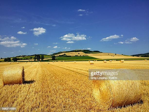 View Of Hay Bales In Field