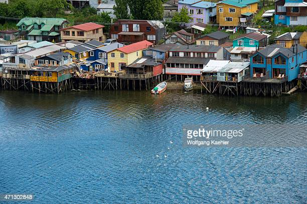 View of houses on stilts with Blacknecked swans swimming on the water in the town of Castro on Chiloe Island in southern Chile