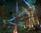 View of illuminated Capilano Suspension Bridge Park, Vancouver, British Columbia, Canada