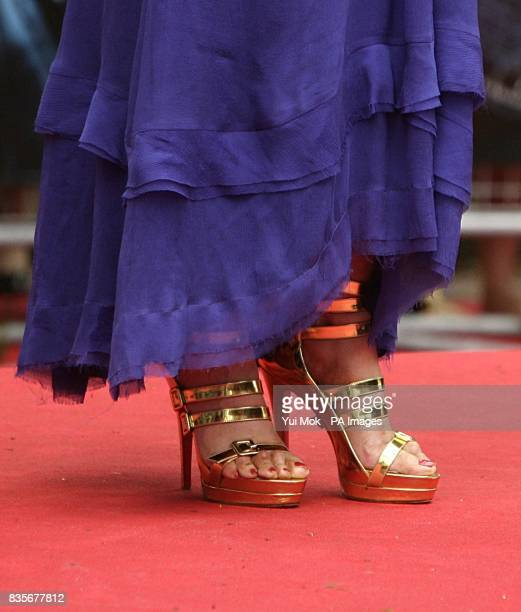 A view of JK Rowling's shoes at the world premiere of Harry Potter and the HalfBlood Prince at the Odeon Leicester Square London