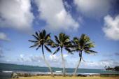 View of Kualoa beach on the island of Oahu on June 17 2010 AFP PHOTO/PATRICK BAZ