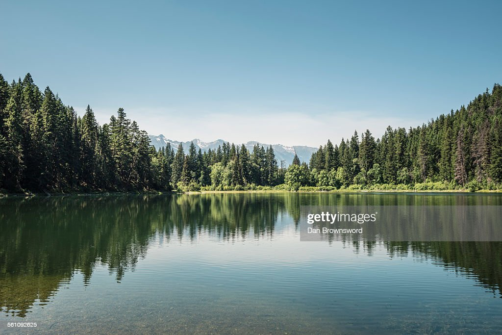 View of lake and forests, British Columbia, Canada