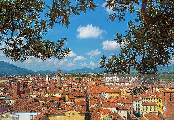 View of Lucca (Tuscany, Italy) from the Guinigi tower