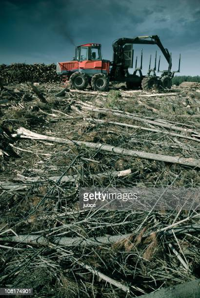 View of machine depicting remnants of deforestation