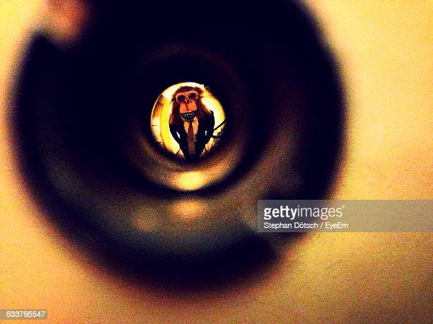 View Of Man In Monkey Mask Through Peephole In Door