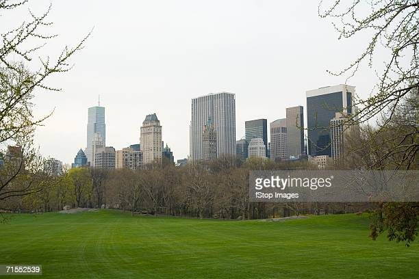 View of Manhattan skyline from Central Park, New York City