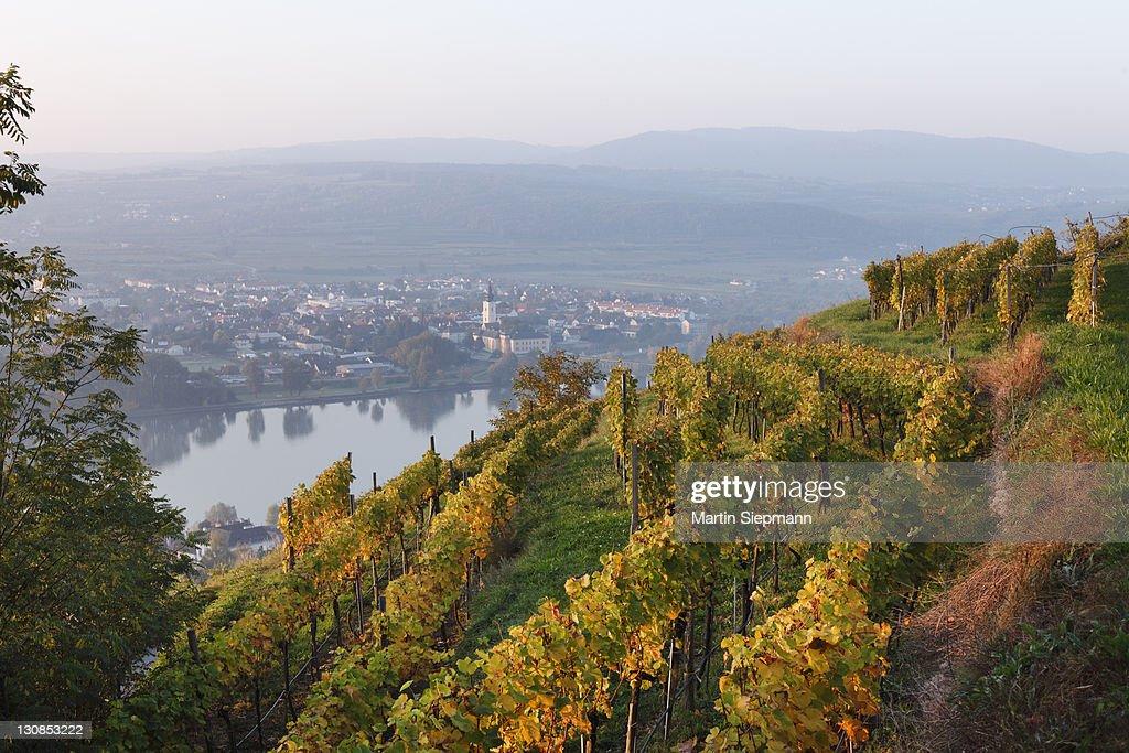 View of Mautern on the Danube river as seen from the Steiner Kreuz cross, Wachau valley, Waldviertel region, Lower Austria, Austria, Europe