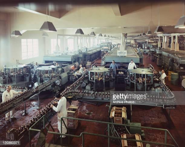 View of men working in beer factory