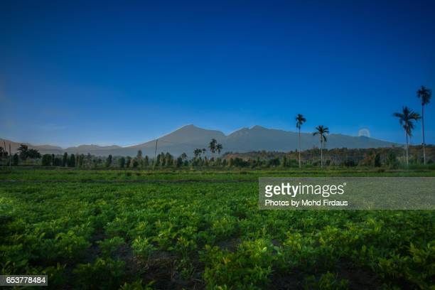 View of Mount Rinjani from Senaru, Lombok, Indonesia