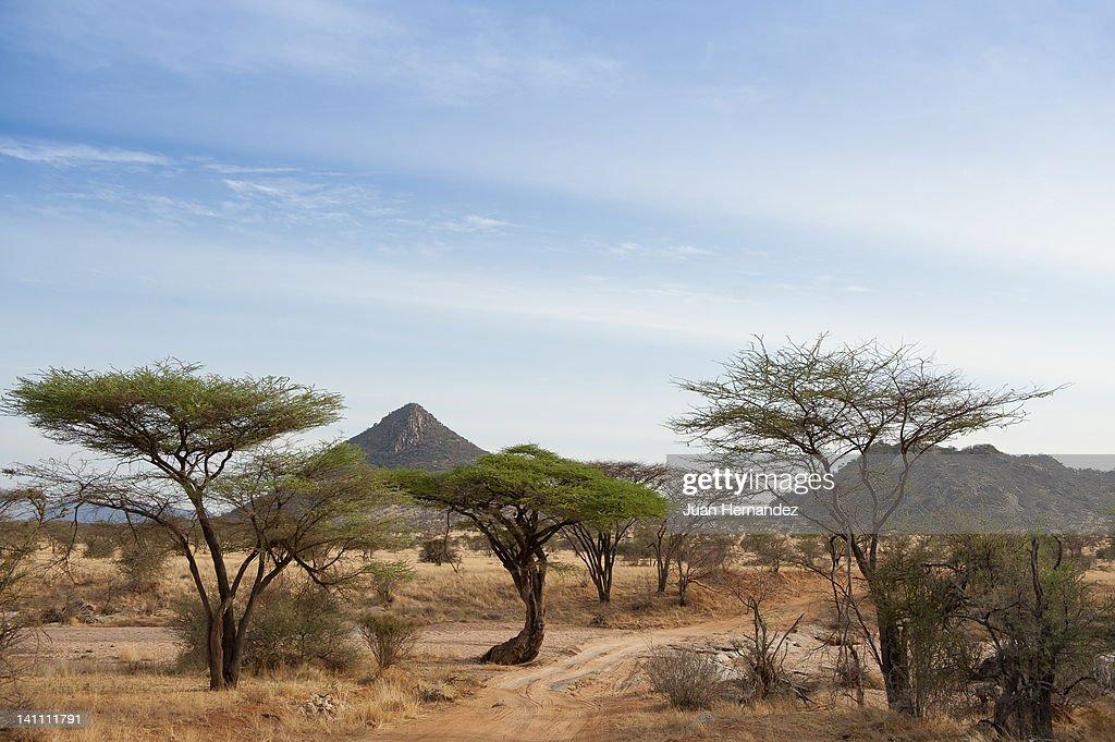 View of mountain in Samburu : Stock Photo