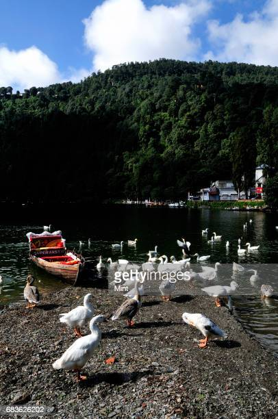 View of Nainital It is a popular hill station in the state of Uttarakhand