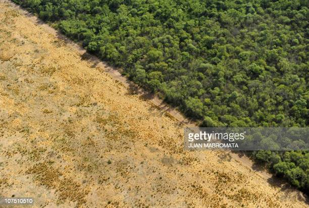 View of native forests and land cleansed for agriculture in Bella Vista province of Salta northwest Argentina near the border with the province of...