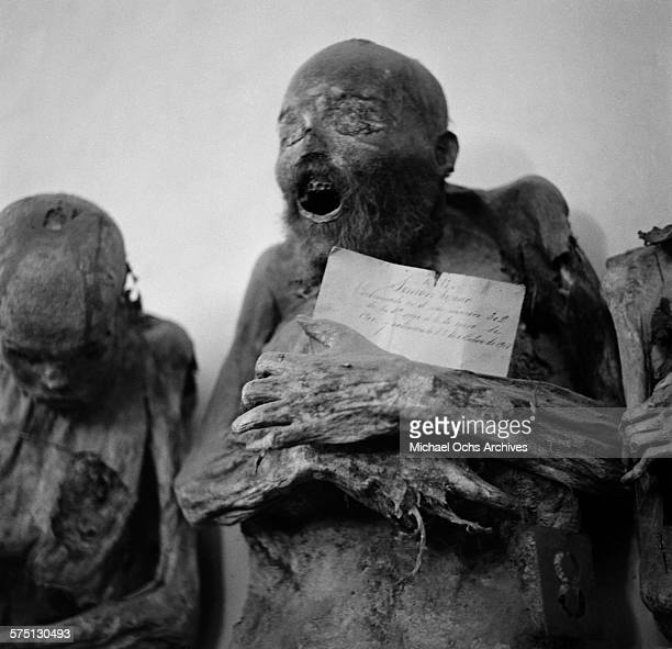 A view of naturally mummified bodies in the Mummy Museum in Guanajuato Mexico