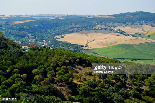 View of nature from Vejer de La Frontera in the mountain