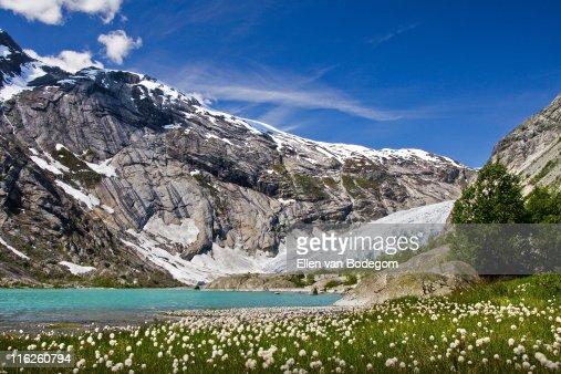 View of Nigardsbreen glacier