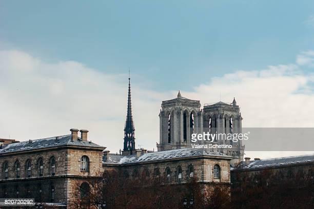 View of Notre Dame de Paris cathedral.