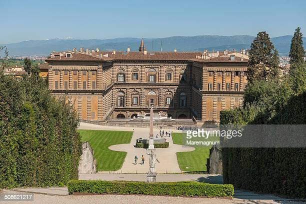 View of Palazzo (palace) Pitti