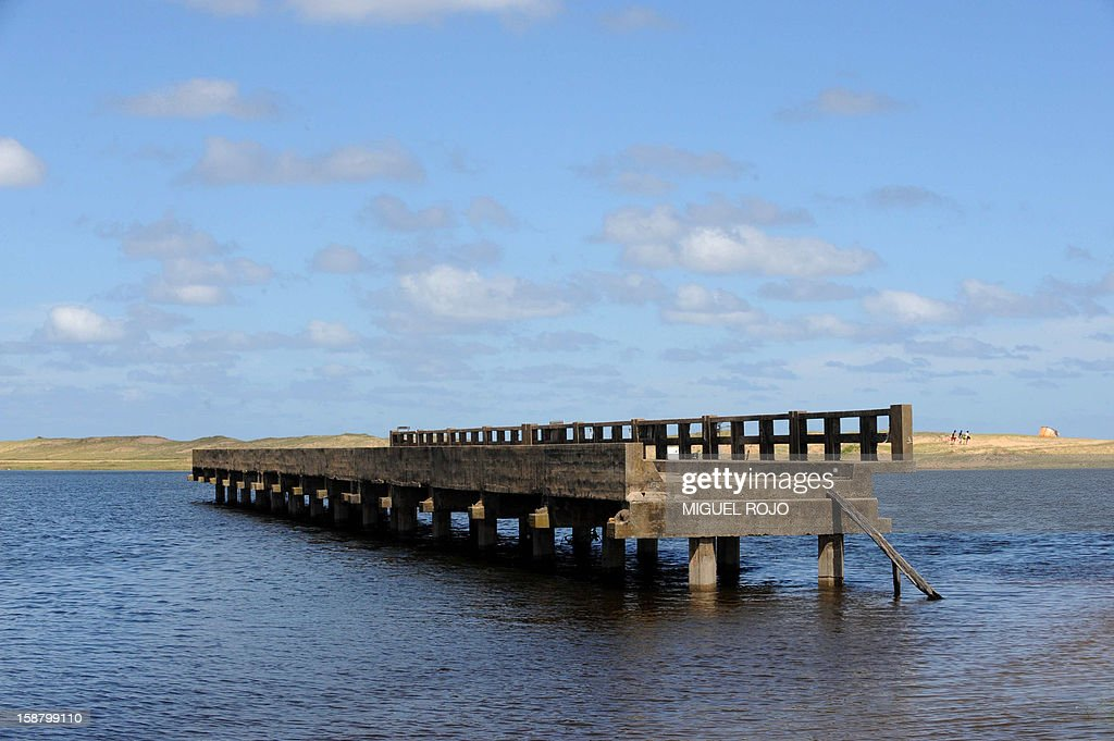 View of part of the former bridge over the Garzon Lagoon, which used to link Maldonado and Rocha departments, Uruguay on December 27, 2012. AFP PHOTO/Miguel ROJO