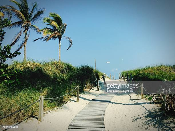 View Of Pathway Leading Towards Miami Beach Against Clear Sky