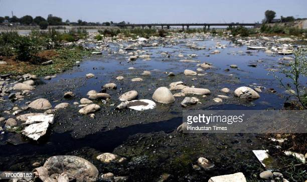 A view of polluted river Tawi on the occasion of World Environment Day on June 5 2013 in Jammu India The World Environment Day is celebrated June 5...