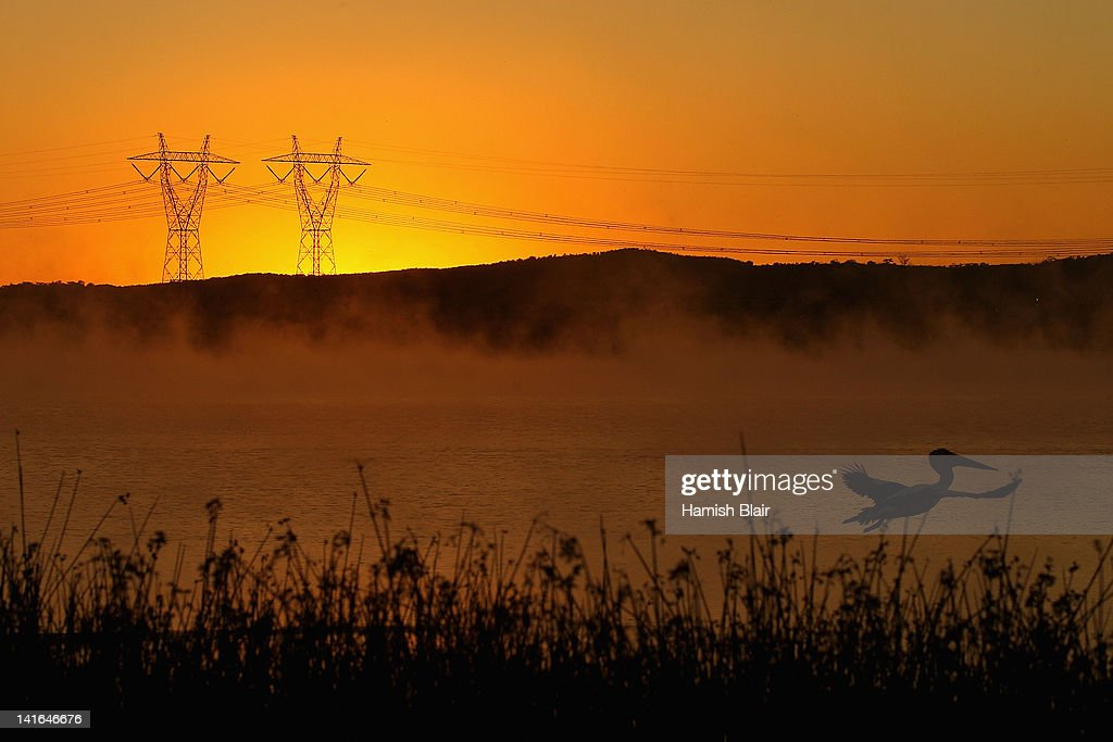 A view of power lines in early morning fog from the Hazelwood Power Station cooling pondage on March 21, 2012 in Melbourne, Australia. The brown coal fueled power station, located in Latrobe Valley is the oldest in Victoria and provides the state nearly 25% of its energy. In 2005 Hazelwood was labeled Australia's least carbon efficient power station by WWF Australia and continues to be a target of issue of environmentalist groups.