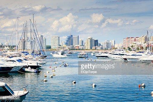View of Punta del Este harbor