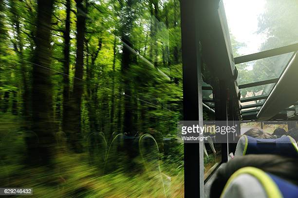 View Of Road Through Bus Window at road into Milford Sound