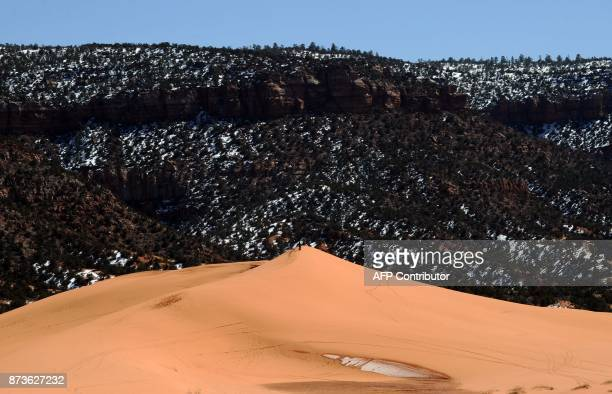 View of sand dunes at the Coral Pink Sand Dunes State Park in Utah on March 11 2011 Coral Pink Sand Dunes State Park encompasses 3730 acres in...