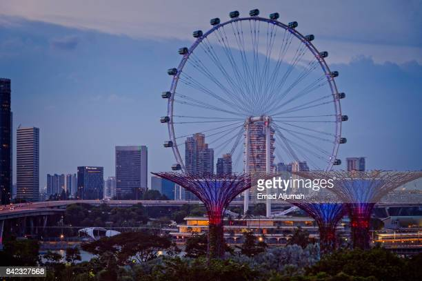 View of Singapore Flyer from Gardens By the Bay, Singapore - August 23, 2017