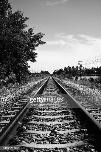 view of straight railway with tree at side of railway : Stock Photo
