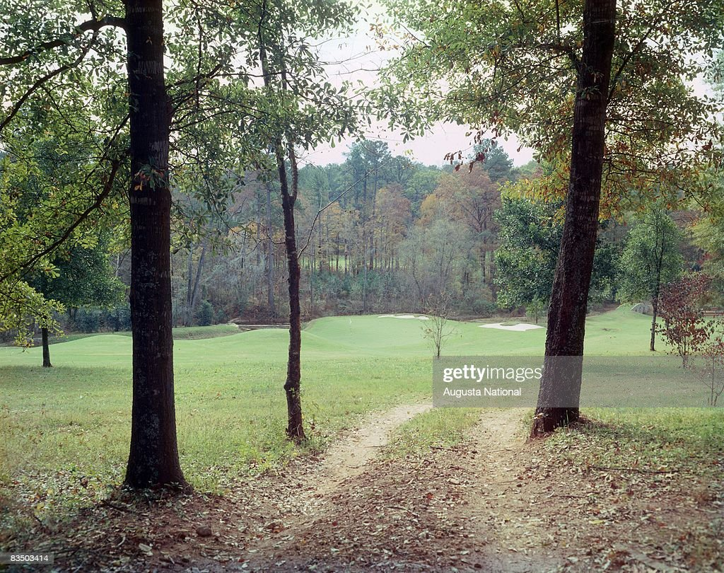 A view of the 11th green through the trees at Augusta National Golf Club in Augusta, Georgia.
